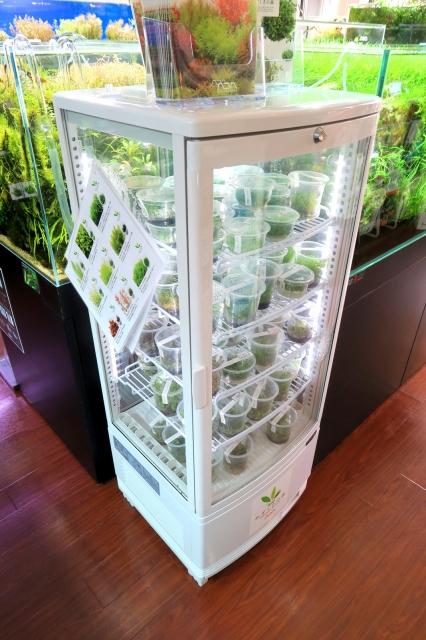 常備在庫 品種は約45種類 在庫数約150個