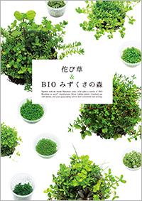 佗び草 & BIOみずくさの森 パンフレット A5判 カラー20ページ