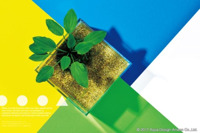 窓辺で手軽に水草の水上葉栽培が楽しめる「DOOA ちいさな水辺 ネオ」(4月下旬発売予定)