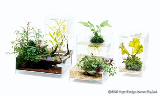 小型ガラス水槽「ネオグラスエア」