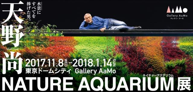 東京ドームシティ『Gallery AaMo(ギャラリー アーモ)』にて 『天野尚 NATURE AQUARIUM展』開催決定
