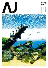 今月のAJ「巨大ネイチャー水草ウォールの全容」
