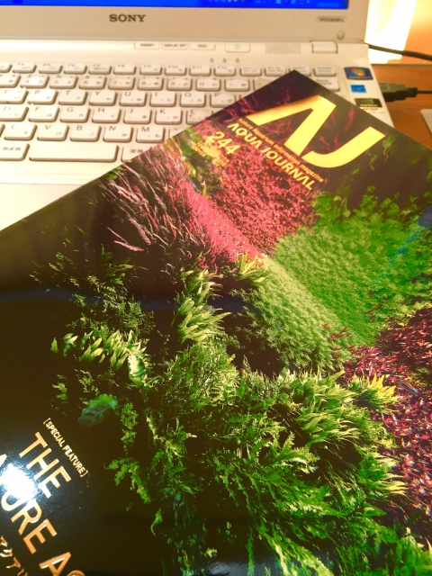 この書籍は、写真集の様でも有りますね!