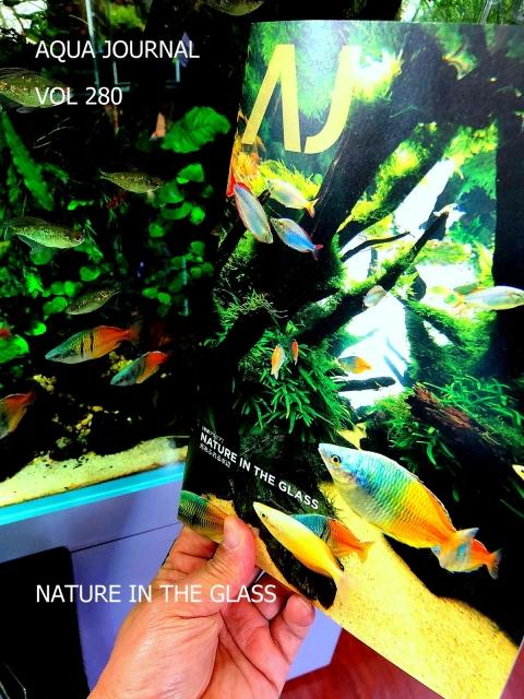 光あふれる水辺 NATURE IN THE CLASS