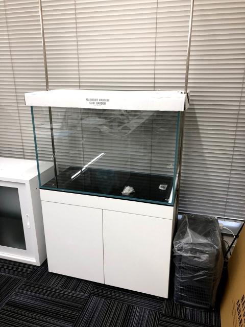 新規90cm水槽 仮設置