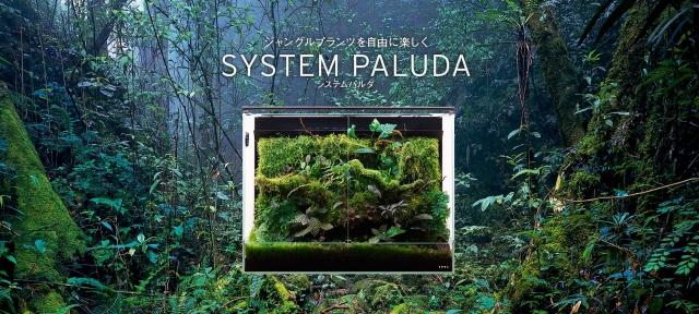 多様な植物が生息する生態系を再現 熱帯雨林さながらの多湿な環境で特色ある植物の育成が可能