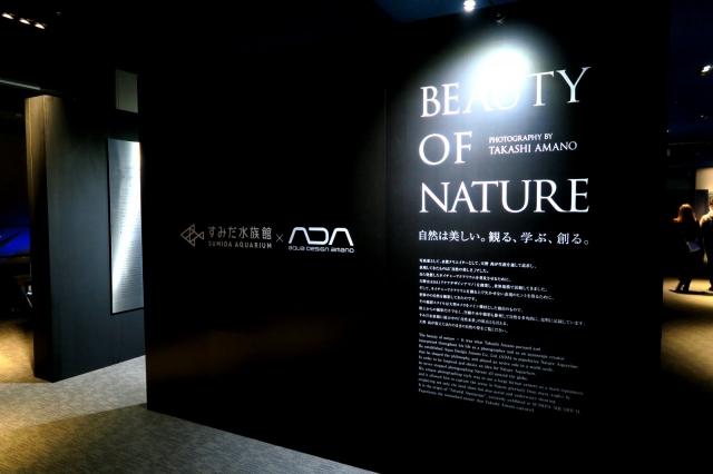 環境写真の真骨頂『自然は美しい』