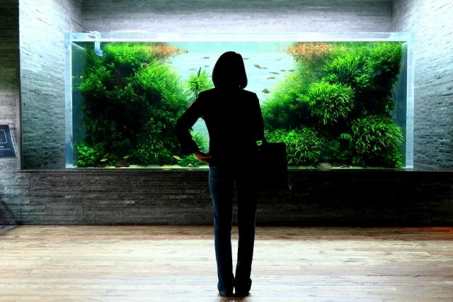 この水景の前では人は静寂の時を刻みます。
