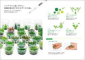 昨今は、水草の主流になりつつあるBIOの水草です。